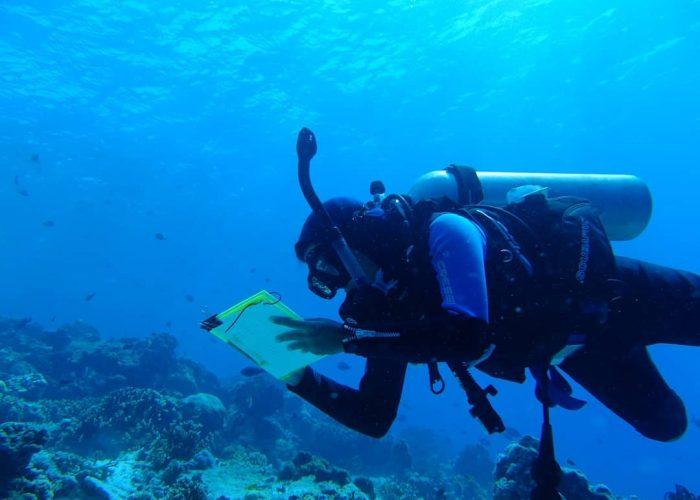 Mengamati Ikan di Nusa Tenggara Barat