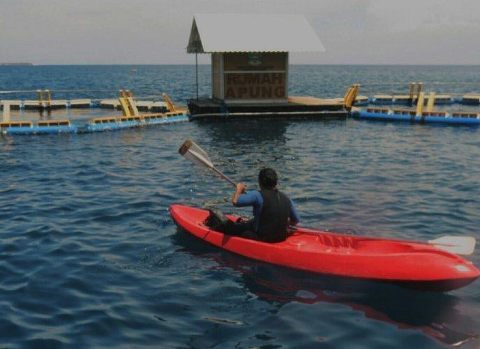 Praktik Kerja Lapangan di Bangsring Underwater