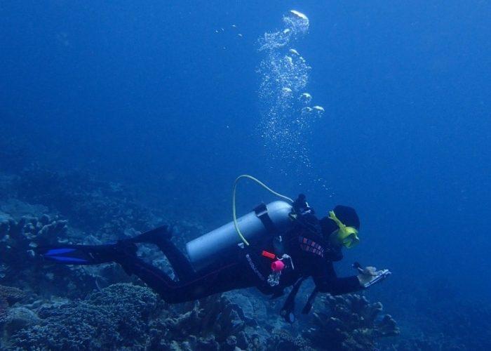 Menyelami Laut Seram dan Mengagumi Keindahannya